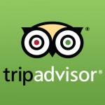 Write a review about 
